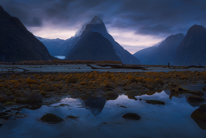 Mitre Peak rises above Milford Sound on a gloomy evening