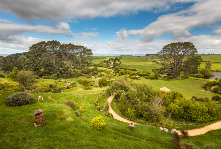 The hills and trees of Hobbiton in soft afternoon light