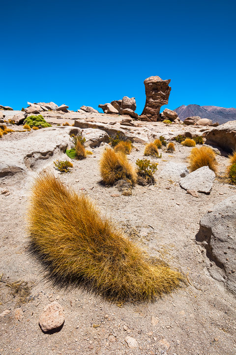 Artistic rock structures near Laguna Negra in Bolivia