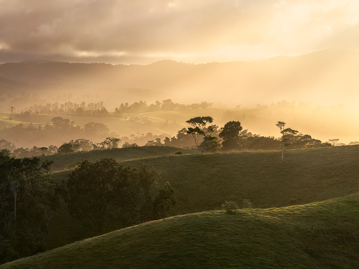 Rolling hills near Millaa Millaa during sunset