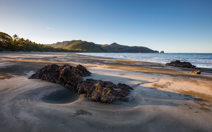 warm evening light on the palm lined beach of Cape Hillsborough