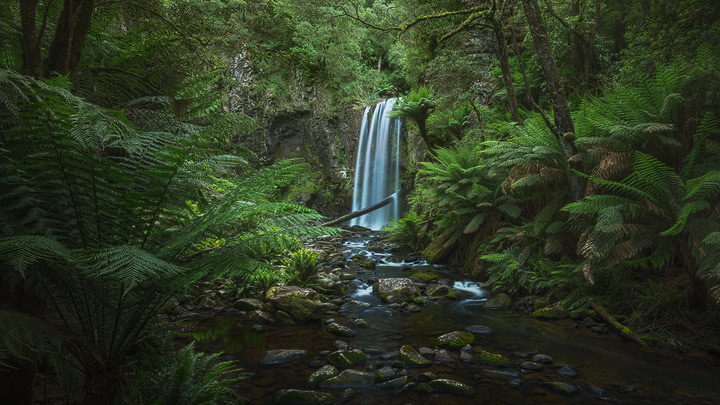 A beautiful waterfall surrounded by lush green vegetation