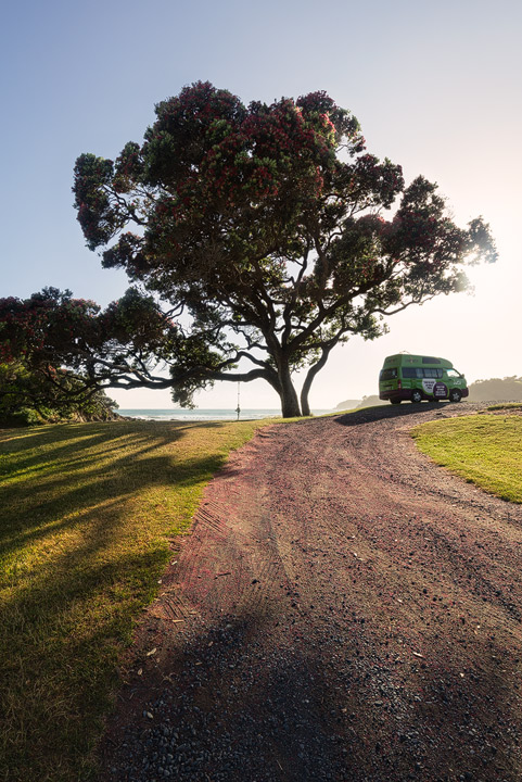 A Jucy Capervan beneath a beautiful tree during monring