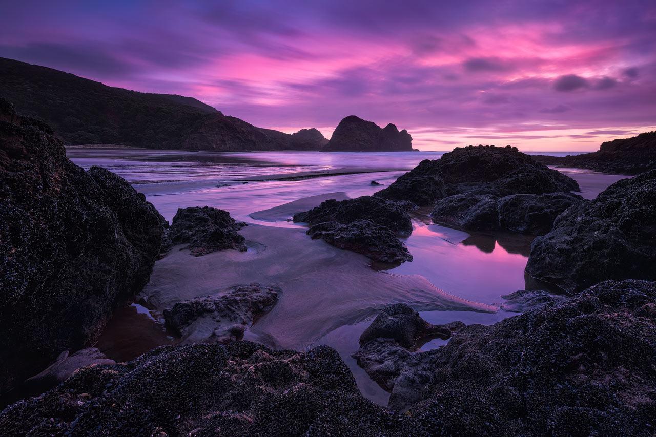 Pink sunset at Piha Beach