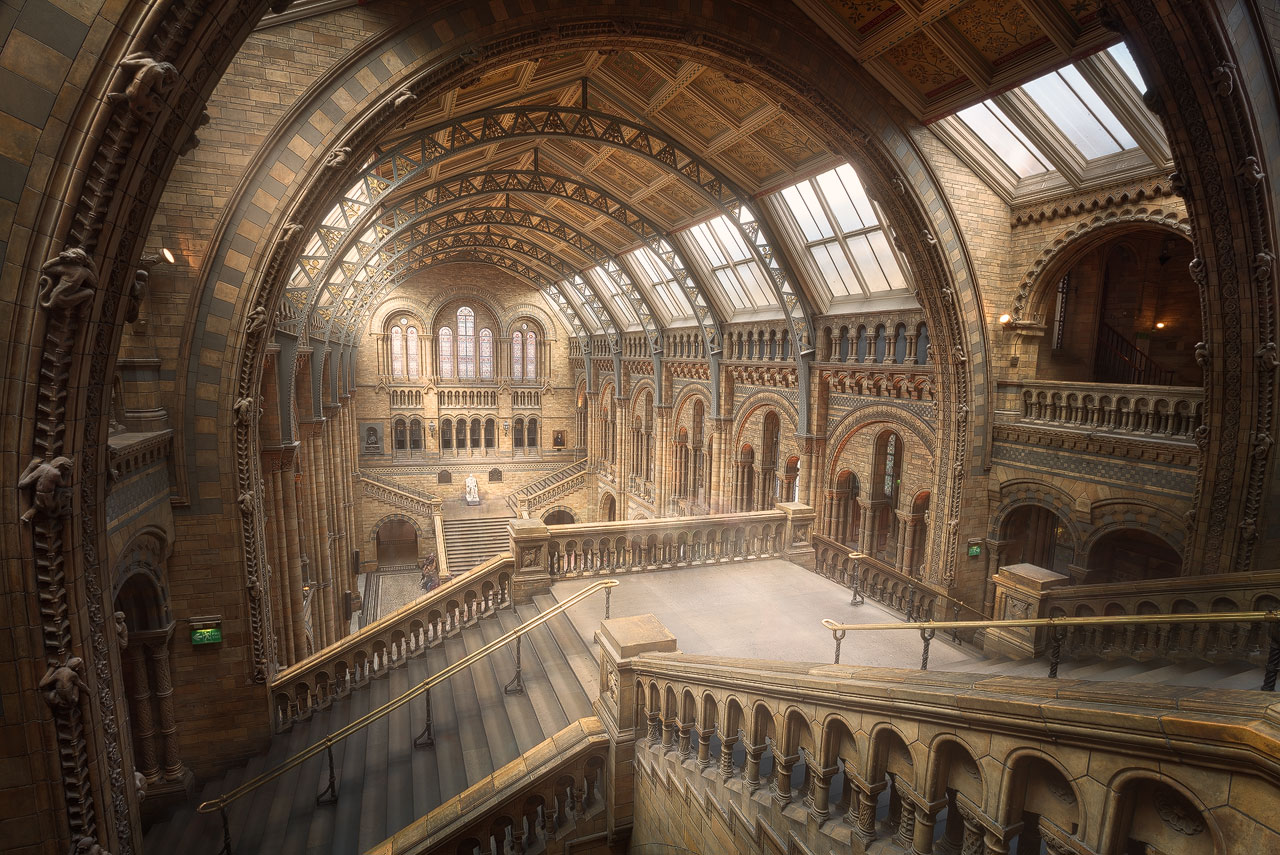 Architekturfoto der Haupthalle des Natural History Museum in London.