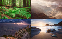 Composite of landscape photos from North America